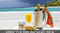 Morning Mimosa or Champagne Sunset Cruise, Miami, Helicopter Tours