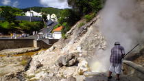 Furnas Private & Customizable Tour (group price), Ponta Delgada, Private Sightseeing Tours