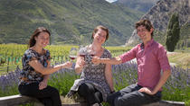 Central Otago Wine Tours from Queenstown, クイーンズタウン