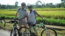 Bali Cycling Eco Tour with Buffet Lunch, Bali, Private Day Trips