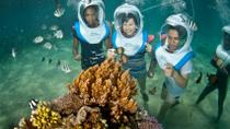 Bali Reef Cruise and Lembongan Island Day Trip, Tanjung Benoa, Dinner Packages
