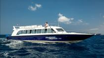 Blue Water Express Boat Transfer From Serangan Or Padang Bai To Lombok Or Vice Versa, Bali, Day ...