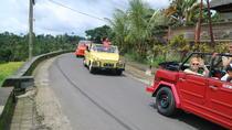Full-day Kintamani Volcano Tour with VW Safari, Bali, Private Sightseeing Tours