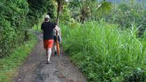 Full-Day Ubud Trekking Tour including Massage Experience, Tanjung Benoa, Full-day Tours