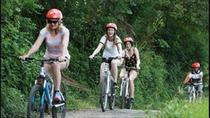 Half-Day East Bali Village Cycling Tour with Lunch or Dinner, Tanjung Benoa, Bike & Mountain Bike ...