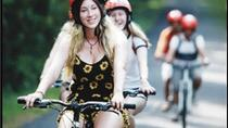 Half-Day East Bali Village Cycling Tour with Lunch or Dinner