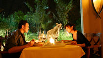 Self-Guided 4-hour Dining With The Lions Small Group Tour in Bali, Tanjung Benoa, Nature & Wildlife