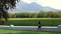 Full-Day South African Wine Tour, Cape Town, Wine Tasting & Winery Tours