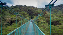 Selvatura Park Hanging Bridge Canopy Tour in Monteverde, Monteverde, Hiking & Camping