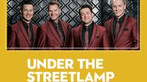 Under the Streetlamp with the Nashville Symphony, Nashville, Classical Music