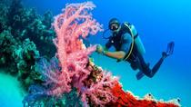 From Hurghada: 2-Hour Trip by Semi-Submarine, Hurghada, Submarine Tours