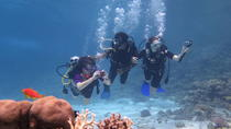 Half-Day Red Sea Dive from Hurghada or El Gouna, Hurghada, Cultural Tours