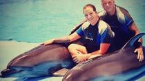 Swim with Dolphins Tour Hurghada, Hurghada, Swim with Dolphins