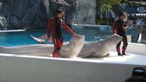 Bangkok Safari World Zoo and Marine Park