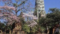 Thailand's Ayutthaya Temples and River Cruise from Bangkok