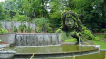 Private Atlanta Nature Tour: City in a Forest, Atlanta, Walking Tours