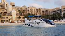 Glass Bottom Boat Tour (Snorkeling Optional), Cayman Islands, Glass Bottom Boat Tours