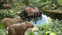 River Safari Experience and Rainforest Lumina ticket, Singapore, Zoo Tickets & Passes