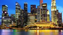 Singapore by Night Tour with Dinner along Singapore River, Singapore, Night Tours