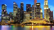 Singapore by Night Tour with Dinner, Singapore, Historical & Heritage Tours