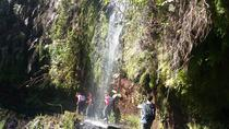 Madeira Outdoors Private Moderate Walking Tour with Mountain Guide, Funchal, Custom Private Tours