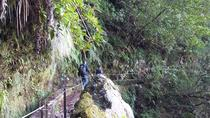 Small Group Levada Walk from North to South, Funchal, Custom Private Tours