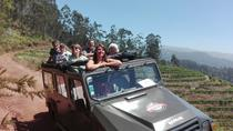 The Vineyards - Halfday 4x4 tour, Funchal, 4WD, ATV & Off-Road Tours