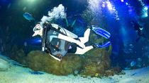 6-Hour Self-Guided Private Tour of Xi'an Qujiang Polar Ocean Park With Diving Experience Plus...