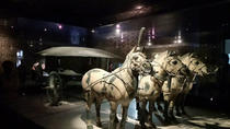 Private Day Tour of Terracotta Warriors, Xi'an Museum, Small Wild Goose Pagoda, City Wall and...