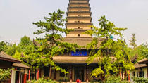 Private Xi'an Tour to Shaanxi Museum with City Wall Cycling and Fountain Show, Xian, Private ...