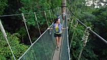2-Day Small-Group Tour: Kinabalu National Park and Poring Hot Springs from Sabah, Kota Kinabalu,...