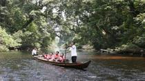 3-Day Taman Negara Adventure from Kuala Lumpur, Kuala Lumpur, Multi-day Tours
