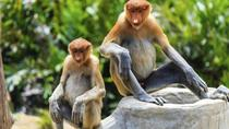 Bako National Park Full-Day Tour from Kuching, Kuching, Cultural Tours