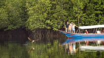 Langkawi Mangrove Forest and Eagle Watching Tour, Langkawi, null