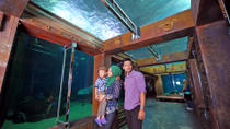 Langkawi Underwater World and Crocodile Farm Tour, Langkawi, Bike & Mountain Bike Tours