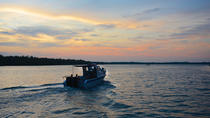 Mangrove Cruise and Irrawaddy Dolphin Watching Cruise, Kuching, Day Trips