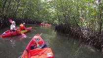 Mangrove Kayaking Experience from Langkawi, Langkawi, Cultural Tours
