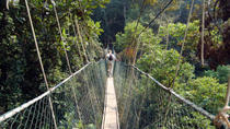 Private Tour: Kuala Lumpur Rainforest and Canopy Walkway Tour, Kuala Lumpur, Multi-day Tours