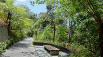 Private Tour: Penang Hill Habitat Nature Walk Including Lunch, Penang, Walking Tours