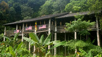 Traditional Bidayuh Village Bamboo Longhouse Tour from Kuching, Kuching, null