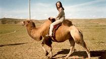 1 Day Coach Tour of Terelj National Park Including Lunch And Free Camel Ride , Ulaanbaatar, Bus & ...
