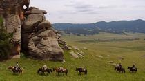 1 Day Small Group Horseback Riding Tour of Terelj National Park Including Lunch, Ulaanbaatar,...