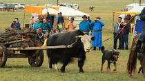 3 Day Nomadic Culture Tour, Ulaanbaatar, Cultural Tours