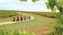 Segway Tour at Seppeltsfield Winery, Barossa Valley, Segway Tours