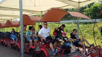 Railbike and Nami Island in one day, Seoul, Private Sightseeing Tours