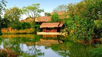 One-day Ecological Tour in Hangzhou Including Xixi National Wetland Park, Hangzhou, Private...