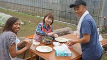 Japanese Tasting Tour and Fresh-Picked Farming, Tokyo, 4WD, ATV & Off-Road Tours