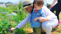 Small Group Tour with Local Organic Farmers in Tokyo, Tokyo, Food Tours