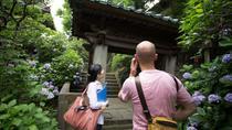 Soak In Kamakura's Autumn Foliage with a Nature Guide, Yokohama, Day Trips
