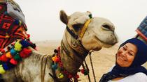 5 hours Giza pyramids camel ride andlunch, Cairo, Nature & Wildlife